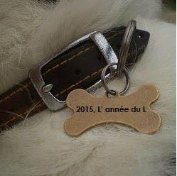 prénom chien année du L