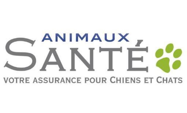 Animaux Sante Assurance Chiens Chats