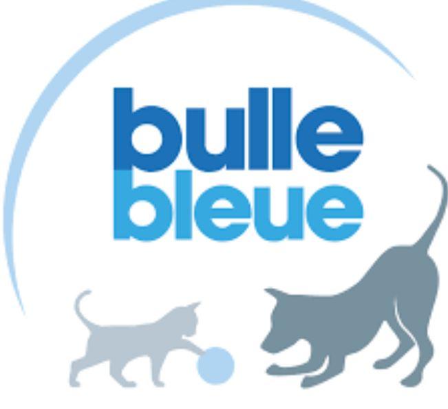 Bulle Bleue Assurance